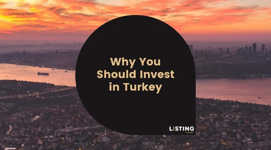 Why You Should Invest in Turkey